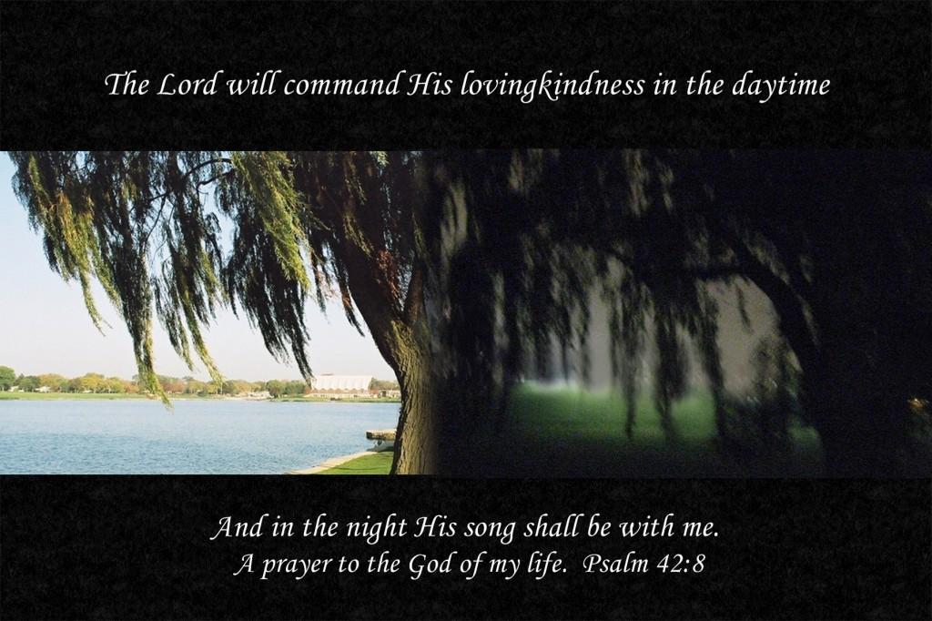 psalm 42 4 thisone